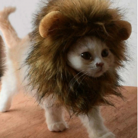 Cat Lion Hat